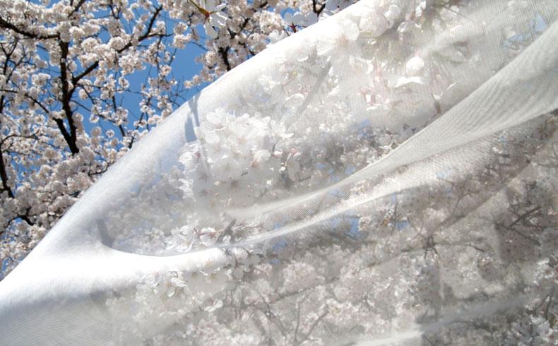 織り上がった白生地を検品する。