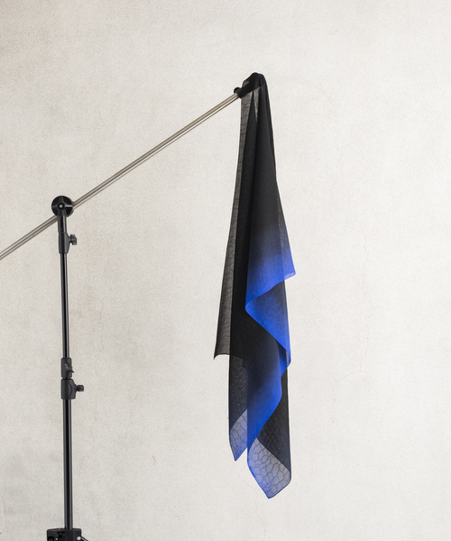 漆黒のバイカラー ブルー